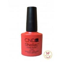Лак CND Shellac (цвет Tropix), 7.3ml